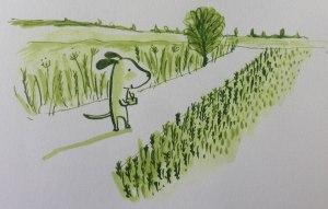 drawing in Suffolk